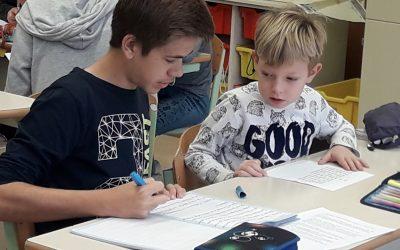 Medvrstniško učenje 3.c in 9.c