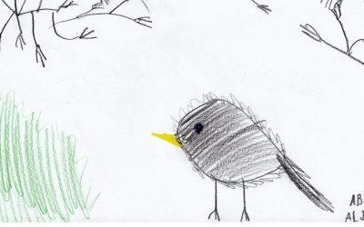 Šolski likovni natečaj »Ptice okoli nas«